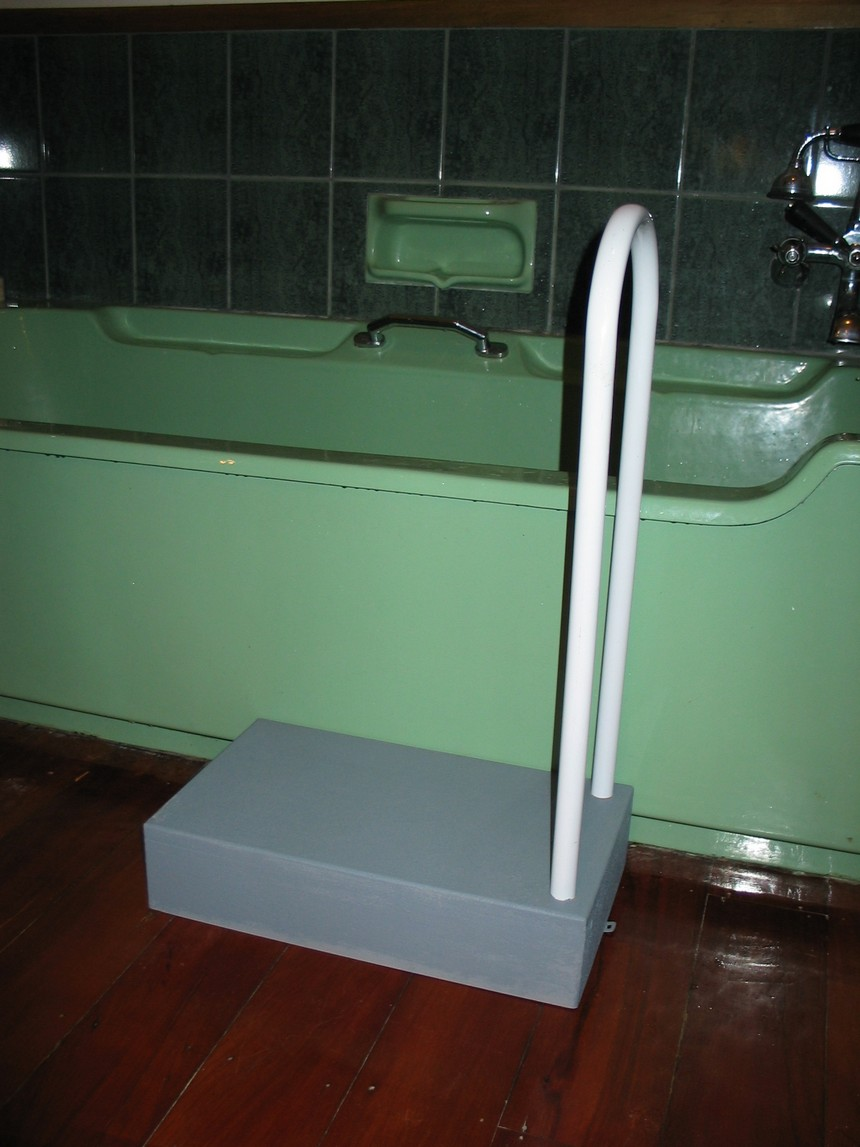 Bath Step with Support Rail - Carecraft